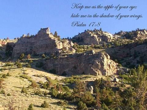 Psalm17-08v_sm_1.jpg
