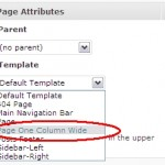 Selecting our custom Page Template